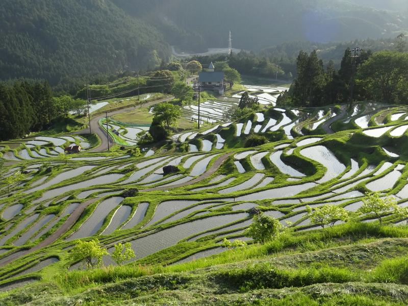三重県熊野地方 棚田